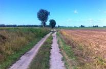 Esztergom – Máriagyűd 431 km 2014 Augusztus 7/3