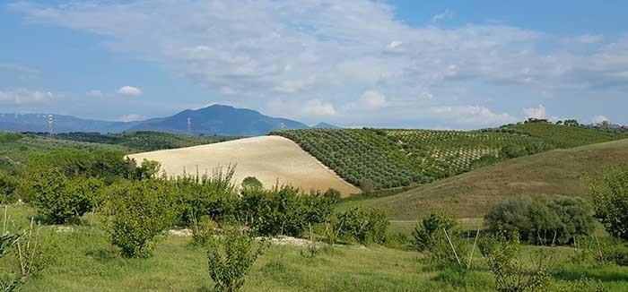 zarandokut_via_francigena_di_san_francesco_montelibretti_olaszorszag_9