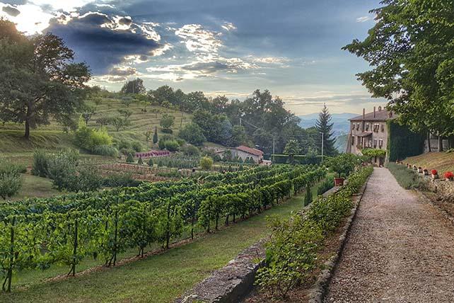 Zarándokút via Francigena di San Francesco Santa Maria della foresta-Olaszország